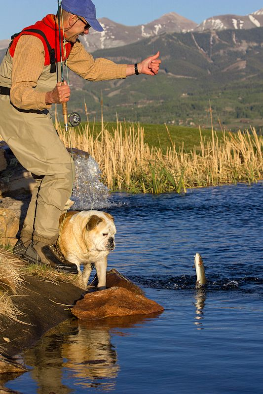 Summer fly fishing in Telluride, #Colorado. Looks like a fun #boomer #travel adventure to us.