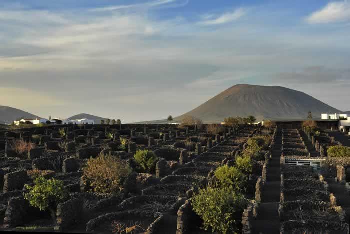 Winery at Bermejo #Lanzarote