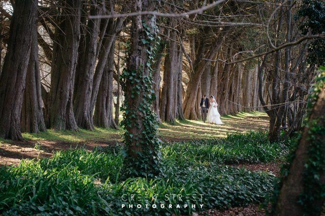 Wedding photos from Summerlees Estate#countrywedding #creekstreetphotography #summerlees 