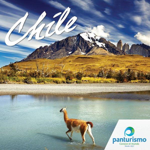 """El origen del nombre de Chile tiene varias teorías, para algunos historiadores proviene de la palabra """"tchilli"""", que significa """"el lugar donde acaba la tierra"""". Ahora si viajas a Chile puedes decir que literalmente viajas al """"Fin del mundo""""."""