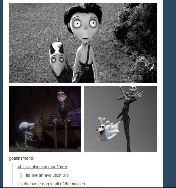 Tim Burton fan theory