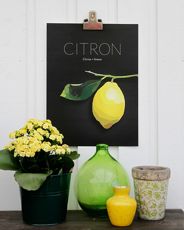 Lemon poster by Scandinavian designer Lisa Hult Sandgren - Nordic Design Collective