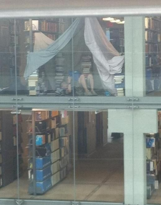 This guy who turned a public library into his own personal fort. He deserves an award.