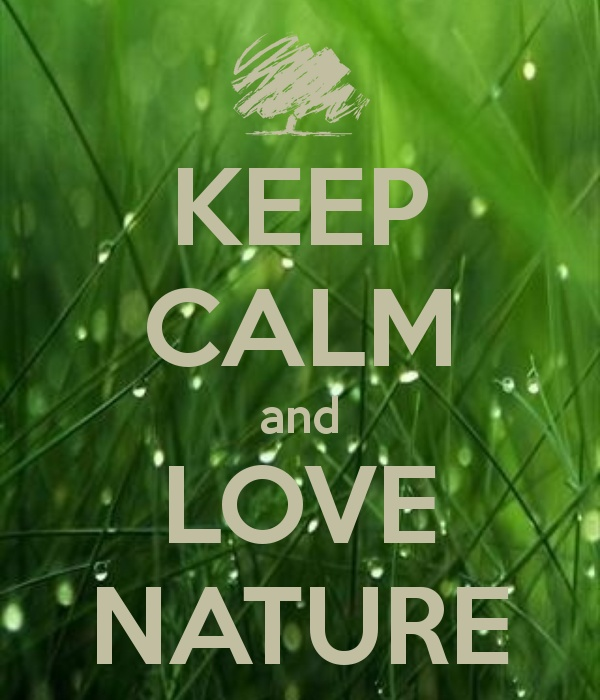 40 Best Images About Words Of Nature On Pinterest