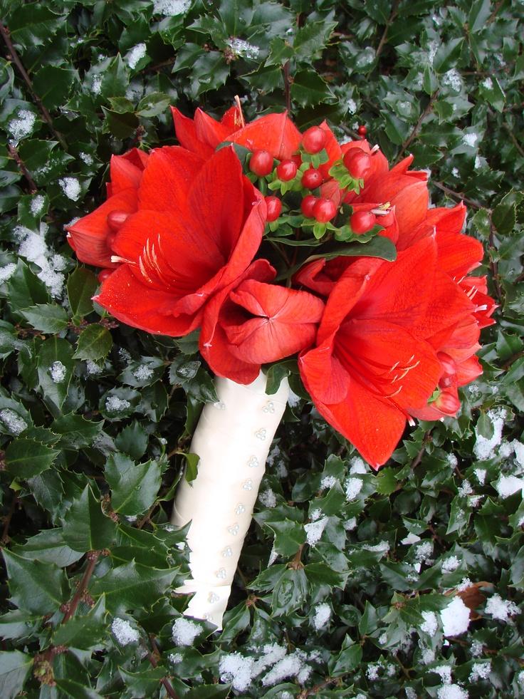 M s de 25 ideas incre bles sobre amaryllis bridal bouquet for Amaryllis en bouquet