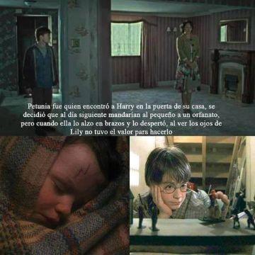 Frases  y curiosidades de Harry Potter que te hacen llorar o reir (con imagenes bonitas):Frase 23 - Son basicamente fra...