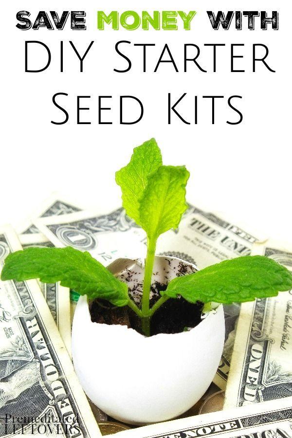 Diy Garden Seed Starter Kits Seed Starter Kit Backyard