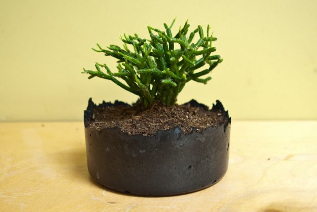 1000 images about concrete planters made with for Craft cement mix