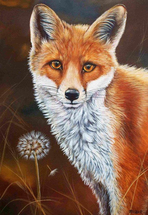 The Fox and the Dandelion    Unmounted Limited Edition Print by well-known professional wildlife artist Helen Clark.    This lovely Limited