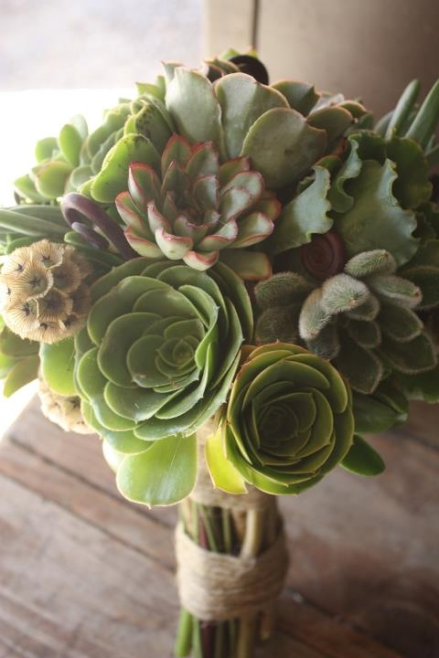 Succulents make excellent bouquets; just root the cuttings after the wedding for a newlywed garden!