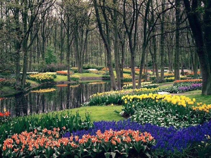 Några av världens vackraste trädgårdar - Sköna hem
