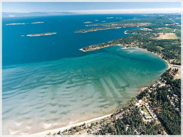 I love Parksville, BC! I make a trip there every August! Place is awesome!!