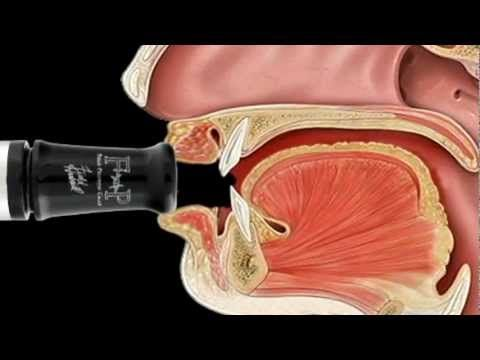 """Mastering the Goose Call Step 9 """"Proper Tongue Placement to break a note over"""" Field Proven Calls - YouTube"""