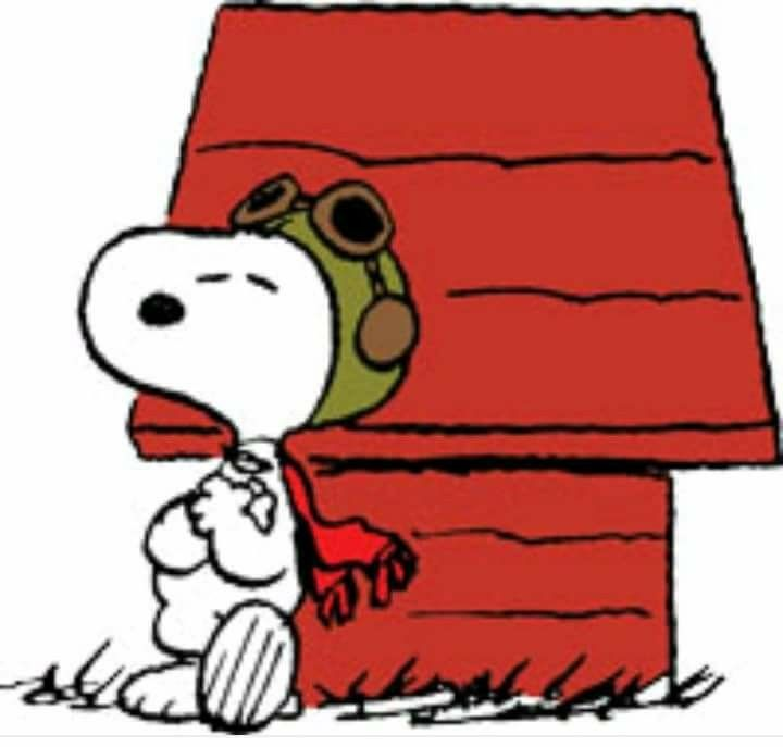 38++ Snoopy flying information