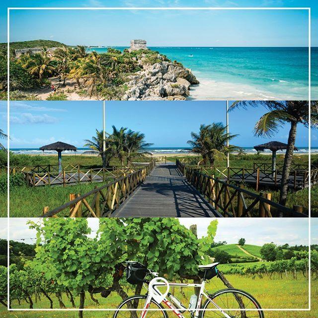 Que tal conhecer a Península de Yucatan e seus incríveis cenotes? Ou visitar as mais lindas praias de Aracaju? Ou até mesmo descobrir os melhores destinos de Bike & Wine pelo mundo? No Tá Por Onde você encontra as melhores dicas sobre cada um destes lugares. Clica no link na bio e fique por dentro de tudo! #taporonde