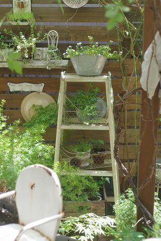 rustic garden ladder - Rustic Garden 2015