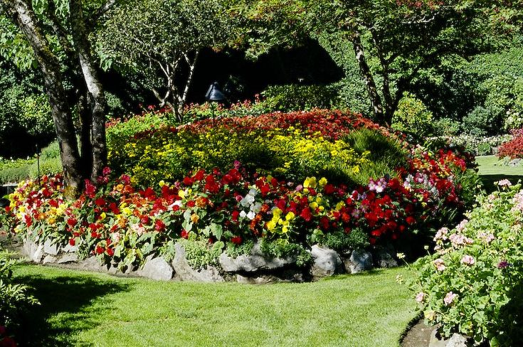 17 best images about park flower bed on pinterest flower for Best flowers for flower bed