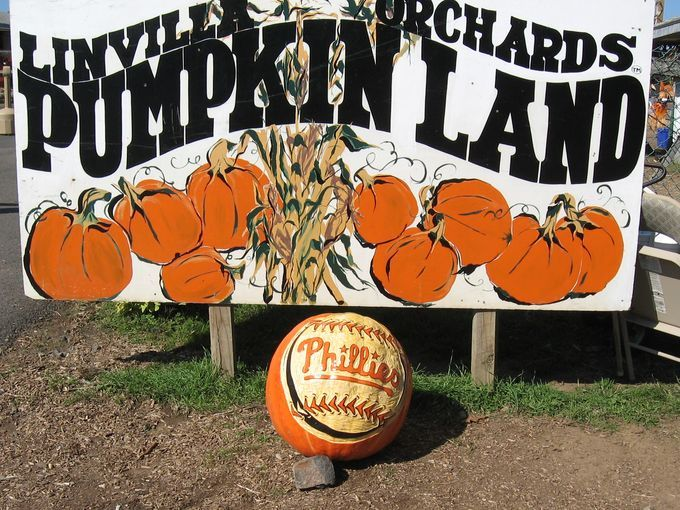 The country's coolest pumpkin patches-USA Today