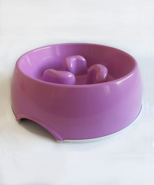 DOGMA SLOW FEED BOWL - PURPLE. Available from www.nuzzle.co.za