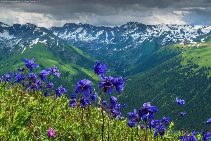Reserva de Katun. Altai - La reserva de la biosfera de Katún o Katunski es una reserva natural estatal de la Federación Rusa. La reserva fue creada 25 de junio de 1991. Se ubica en las tierras altas del centro de Altái. Se extiende por una superficie de 151.664 hectáreas.