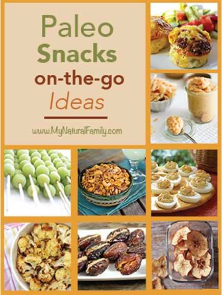 Paleo Snacks on-the-go Ideas - Who Says Healthy Can't Be Fast? - MyNaturalFamily.com #paleo #snacks #gf