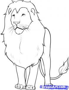 how to draw a lion... i need to work on this.