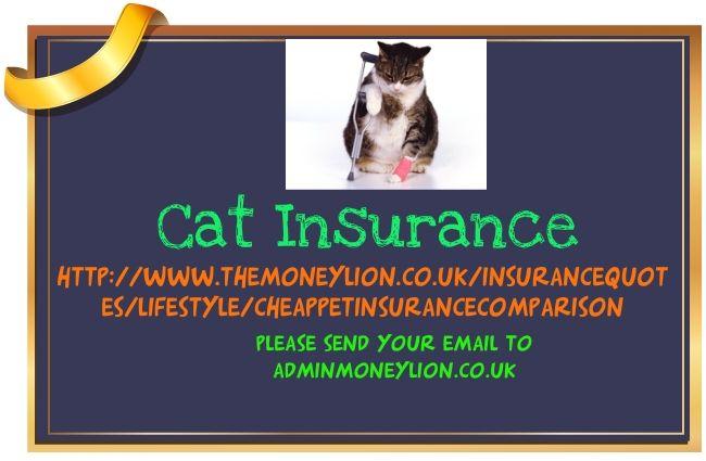 http://www.themoneylion.co.uk/insurancequotes/lifestyle/cheappetinsurancecomparison cat insurance