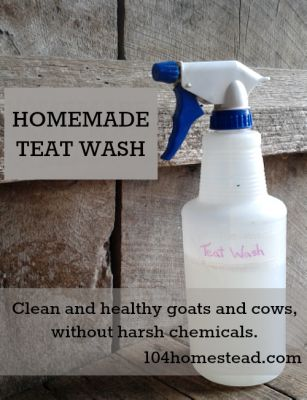 The Homestead Survival | Make Your Own Teat Wash For Your Dairy Animals | http://thehomesteadsurvival.com