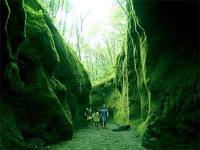 支笏湖そばの「苔の洞門」