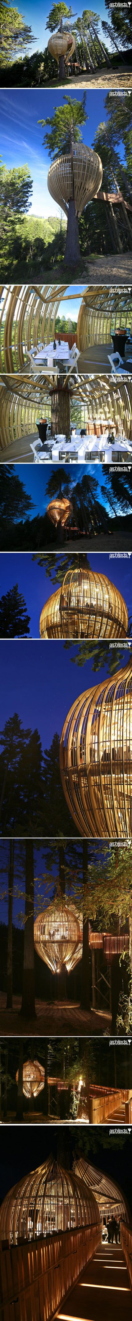 treehouse restaurant cafe yellow pacific environments architects