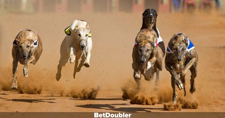 BetDoubler | Double Your Bet  http://betdoubler.com #betdoubler #bet #betting #jackpot #instant #insta #win #winner #winnings #domaindoubler #branddoubler #double #doubler
