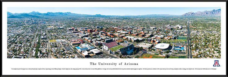Arizona Wildcats Panoramic - Arizona Stadium Picture