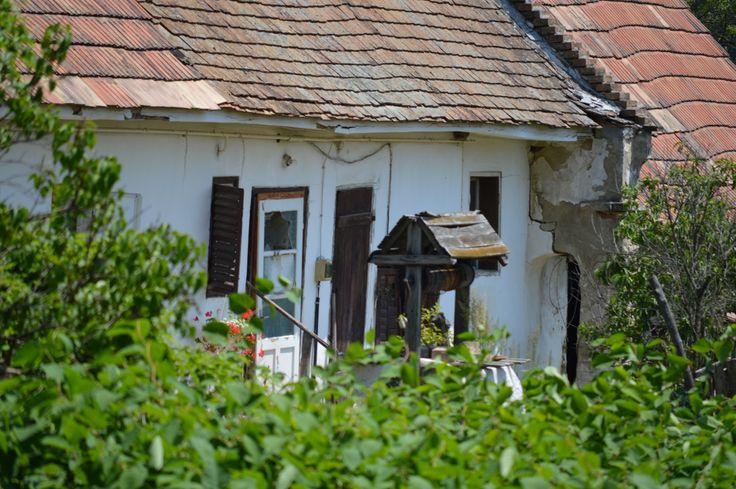 Gáti Erika Pusztavámi öreg ház Idén először voltam, a Német Nemzetiségi napon, Pusztavámon. Nagy örömmel látogattam el, és ha már ott voltam, készítettem egy-két képet… Több kép Erikától: www.facebook.com/erika.gati.3