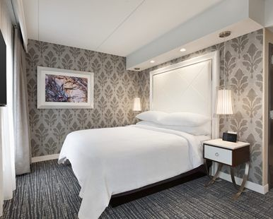 Embassy Suites by Hilton Atlanta NE Gwinnett Sugarloaf Hotel, GA - King Bed and Wall Mounted TV | GA 30097