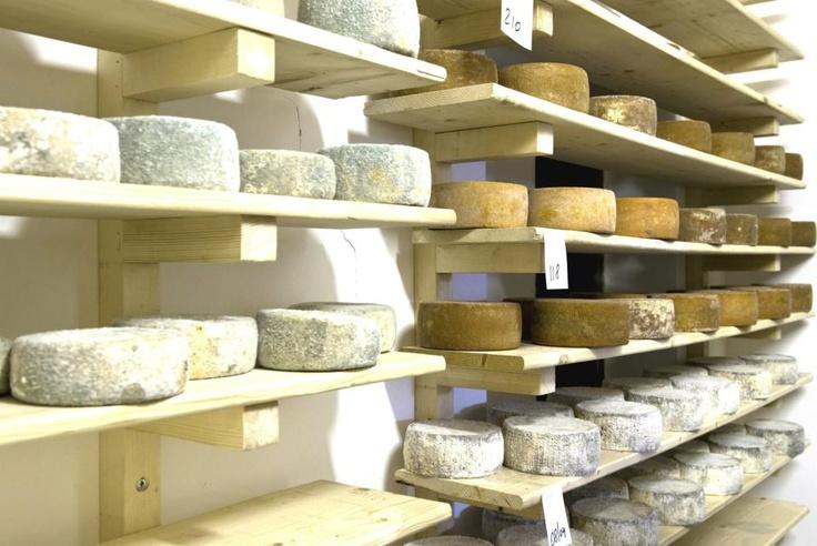 Marovelli cheese