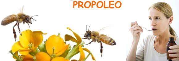 Propoleo, propiedades terapéuticas y características