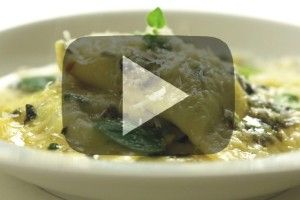 Video 1 | Jídlo je vášeň