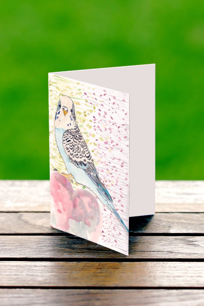 Budgie Greeting Card, Whimsical Water colour Budgie Card, Budgie Cards, Made in Australia, Watercolour Budgie Cards by PaperJamink on Etsy