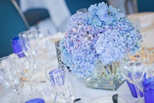 Blue Hydrangea Centerpieces :  wedding blue flowers reception Our Wedding Day 520
