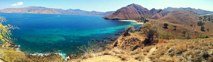 Komodo island - Indonesia (photo by Theo)