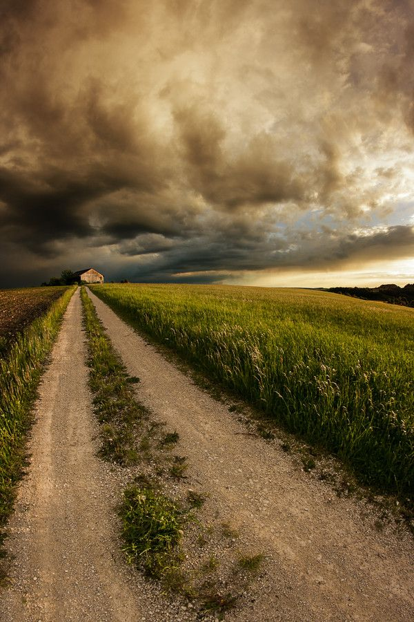 Country Road by Nicolai Bönig, dirt road, field, clouds, house, beauty, country road, beautiful, photograph, photo