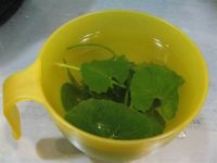 Mulberry Leaf Tea: Benefits, How to Make, Side Effects