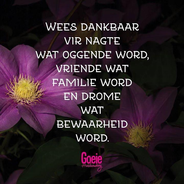 Wees dankbaar vir nagte wat oggende word, Vriende wat familie word en drome wat bewaarheid word..
