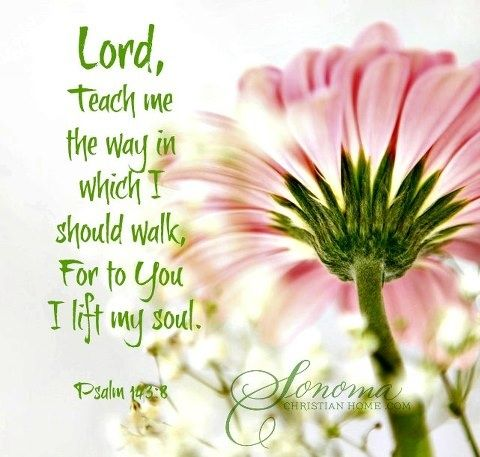 Psalm 103:8  Faith Bible scripture verse. Spiritual inspiration.    Lord, teach me the way ...