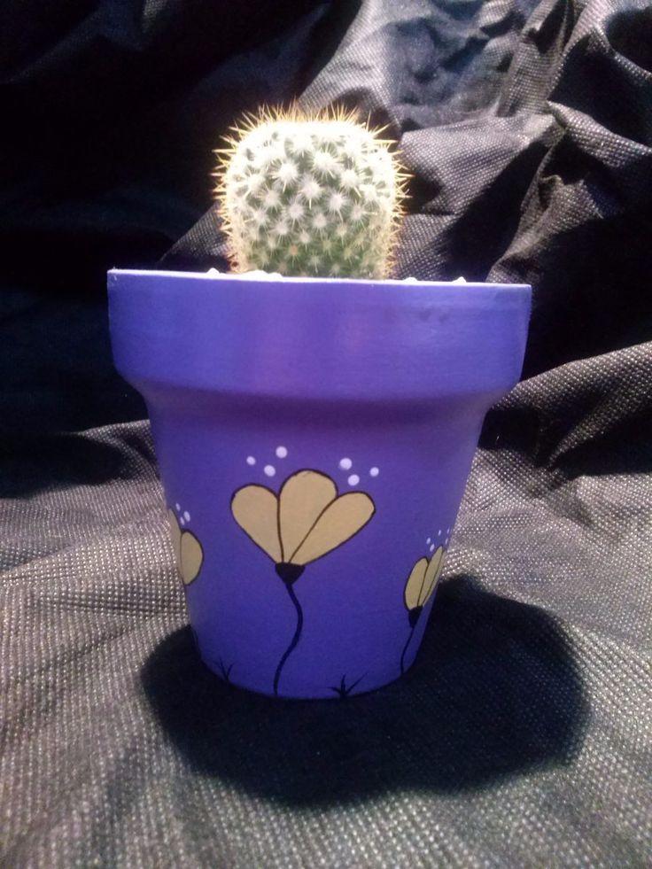 macetas pintadas a mano ideal para cactus o suculentas