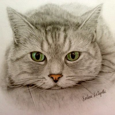 The Cat Lover's Guide to Drawing a Purrrfect Pet Portrait!