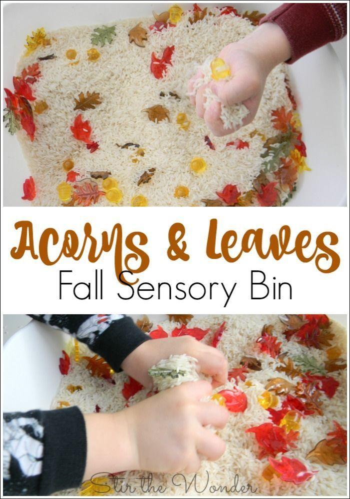 Acorns and Leaves Fall Sensory Bin