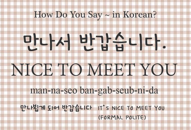 dutch phrases nice to meet you