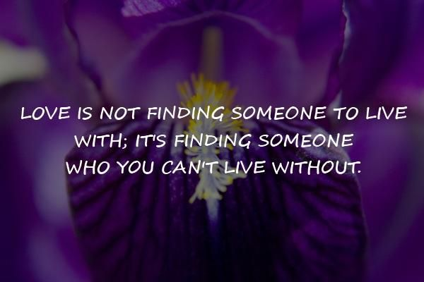 Inspirational Quotes About Finding Love - Love! Have You Found It ? Look here - http://www.psychicinstantmessaging.com/eu7o