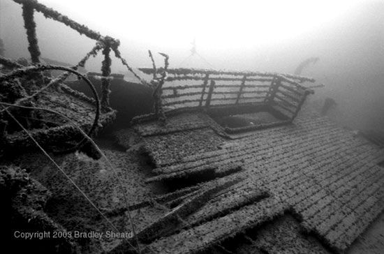 Teak decking still remains in place on the wreck of the Wilhelm Gustloff... Wilhelm Gustloff - The Greatest Ship Disaster and Sinking in History. More than 9000 people died, over 4000 were children; compare this to the number of people who died on the Titanic, which was 1,513. Not many seem to know the history of this ship, it's a very interesting story...